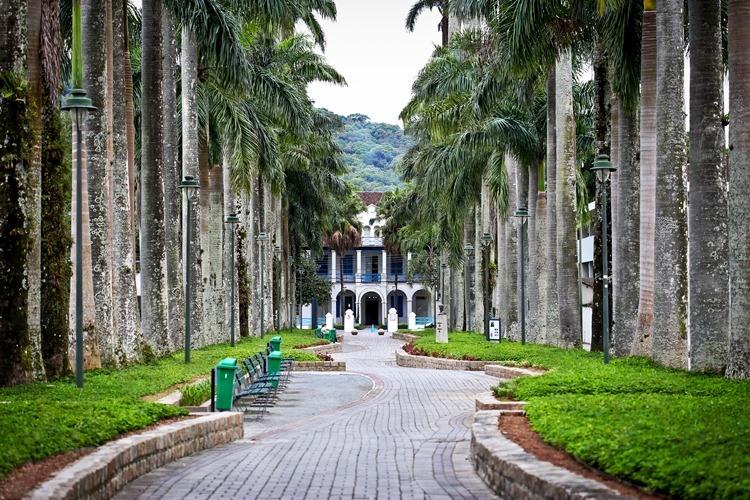 Descubra Joinville